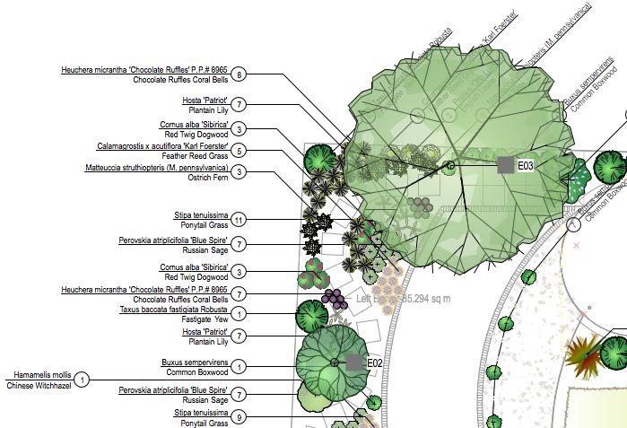 Vectorworks Planting Plan | symbols | Vectorworks ...