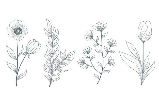 Lade Realistische Naturliche Wilde Blumen Und Krauter Kostenlos Herunter Handgezeichnete Blumen Blumenzeichnung Handstickerei Blumen