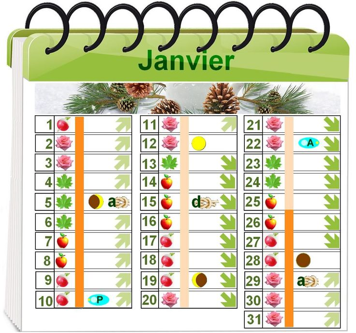 attirant jardin biodynamique calendrier lunaire 4 calendrier lunaire pour le jardinage. Black Bedroom Furniture Sets. Home Design Ideas