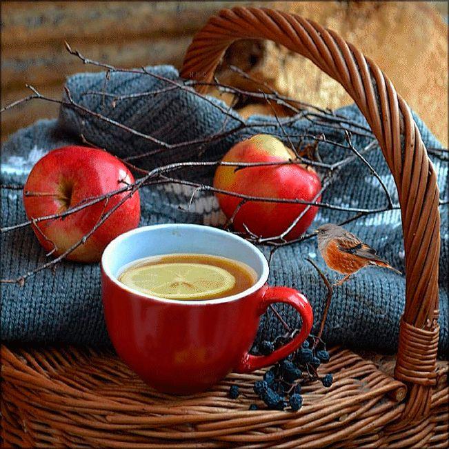 Осенний чай гифы