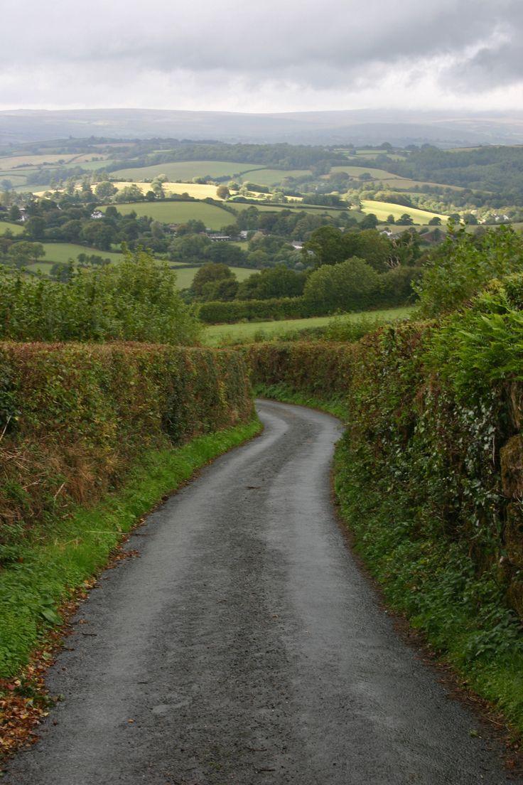 U.K. Hedgerows, Narrow roads of Dartmoor National Park, Devon, England