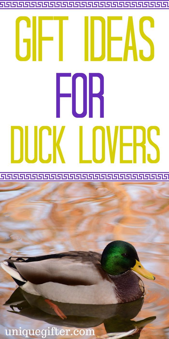 Gift Ideas for Duck Lovers | Duck Lover Gifts | Gifts for People Who Love Ducks |in Duck Lover Presents | Duck Gifts for Boyfriend | Duck Gifts DIY | Duck Gift Ideas | Duck Products | Duck Gifts for Him | Duck Gifts for Hunters | Rustic Duck Gifts | Duck Kitchen Accessories | Duck Bathroom Accessories | Gift Ideas | Gifts | Presents | Birthday | Christmas