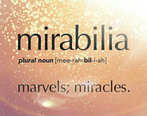 I am VERY happy and proud to say that I thank God for my life. It is a huge mirabilia!