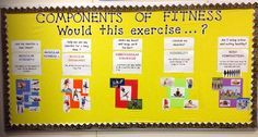 components of physical education bulletin board – Google Search
