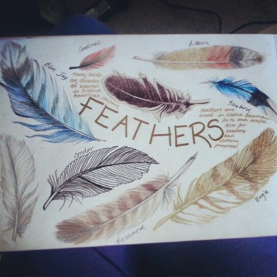 My feather sketchbook page