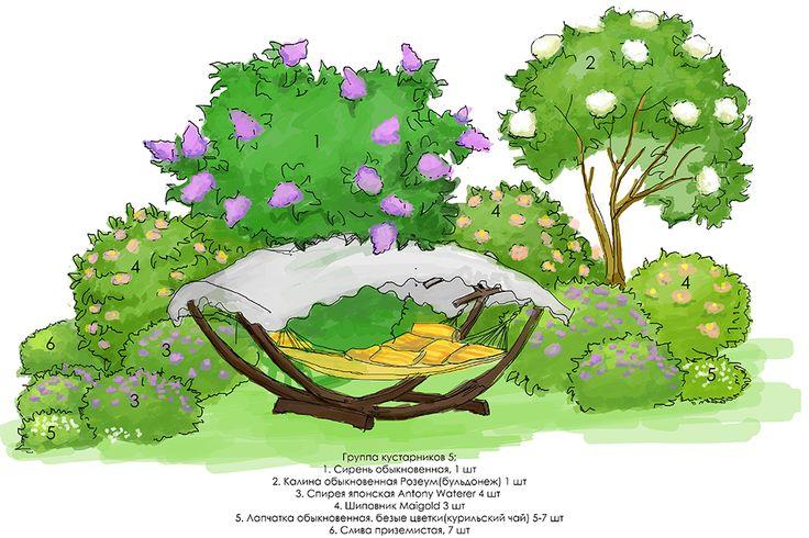 дендро группа кустарников 5