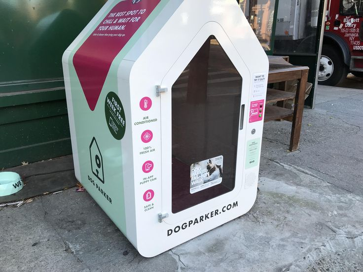 This climate-controlled dog house outside a shop in Brooklyn