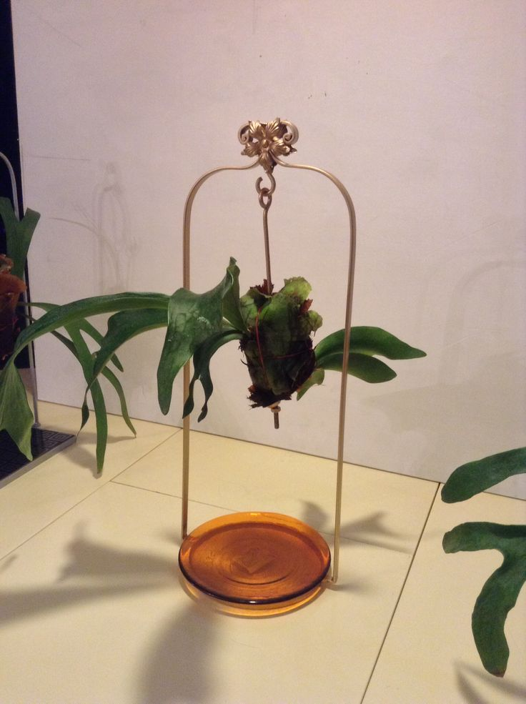 Platicero Mini Angie Oh! En hierro forjado tipo columpio en color dorado o bronce. Con aplicación en forma de flor. Base redonda color caramelo.  Ideal para decorar cualquier espacio. Info por whatsapp 3152227007