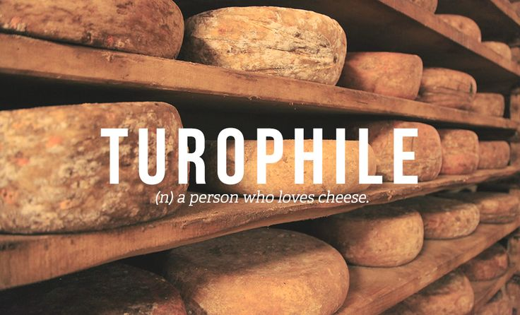 32 Totally Not Weird Non-Sexual Fetishes You Might Have: TUROPHILE (the person who loves cheese)