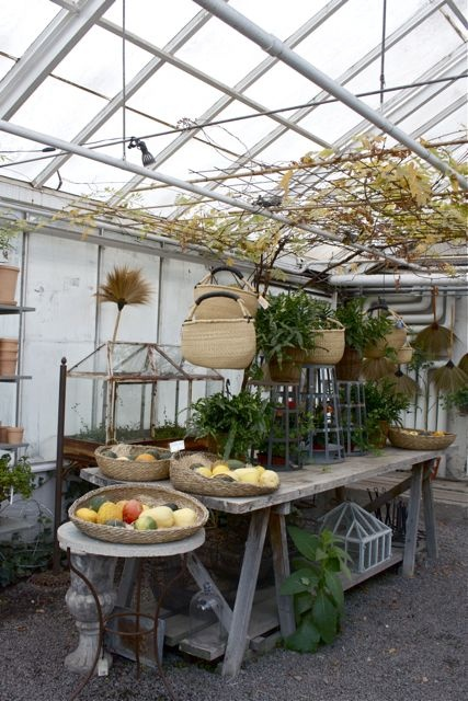 Greenhouse With A Grand Rustic Wood Potting Bench! Love The Baskets Hanging  Overhead And The Garden Accessories And Decor!