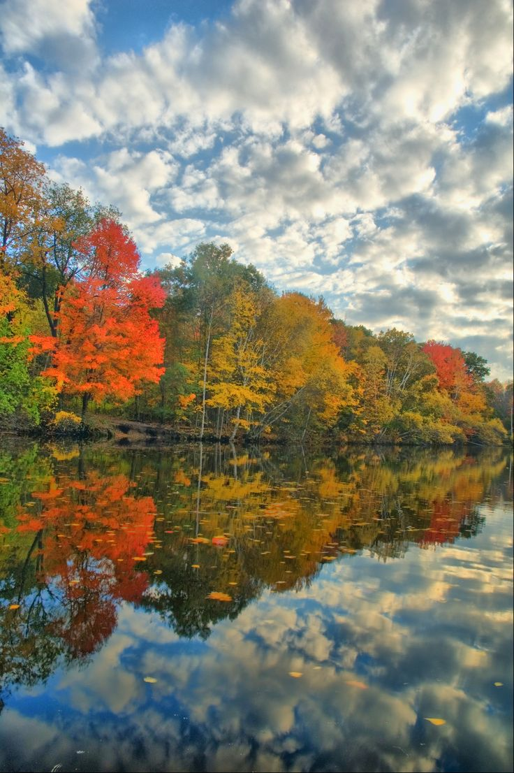Autumn - Old Ice Pond in South Portland, Maine