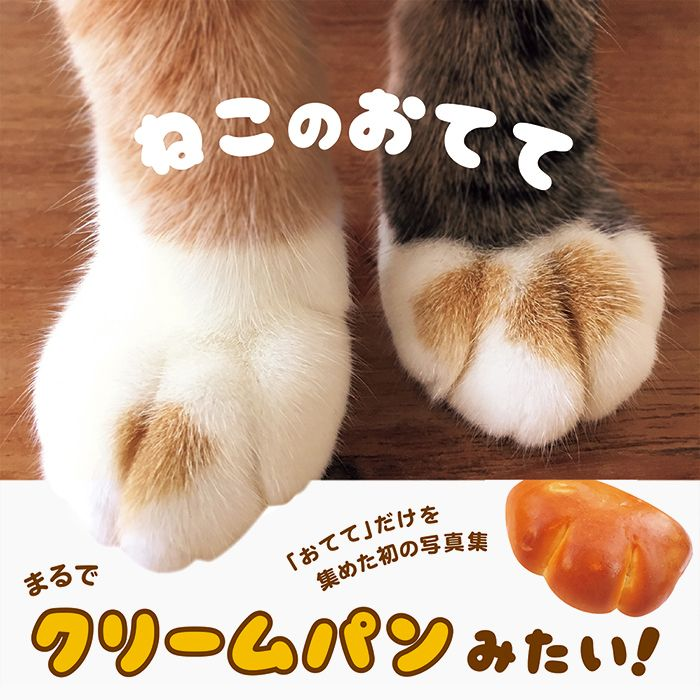 """""""Cat's Paws"""" ISBN:978-4-7562-4858-9  Published by PIE International"""