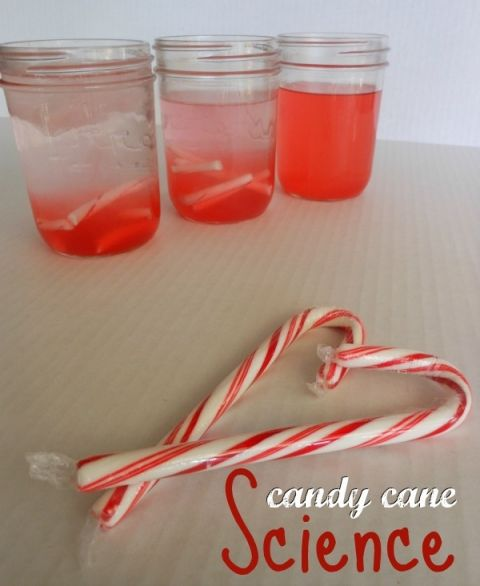 christmas science experiment using candy canes -- so simple!