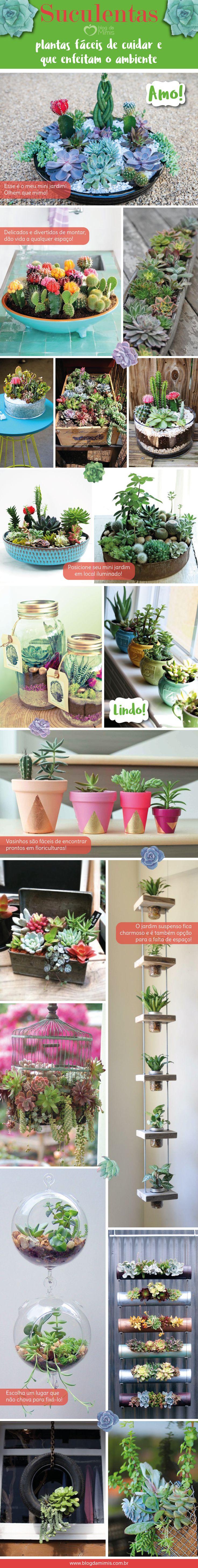 Suculentas: plantas fáceis de cuidar e que enfeitam o ambiente - Blog da Mimis #suculentas #plantas #jardim #minijardim #mini #vasos #decor