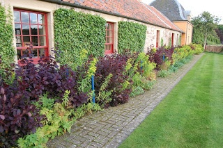 Hands up gardeners who would have the self control to limit a border to only Cotinus 'Royal Purple' , Euphorbia schillingii and some (invisible) geraniums. Broadwoodside is a great place to see simple effective planting.