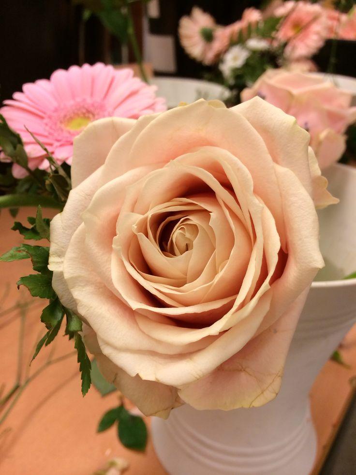 Blomster 4