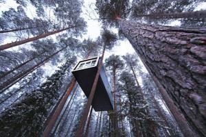 Quieres dormir en un árbol?     Treehotel, en Harads, Suecia    http://www.guias.travel/ver/?hotel/se/treehotel.es.html