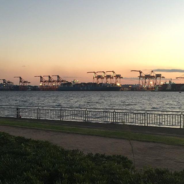 【azuazu62】さんのInstagramをピンしています。 《【コンテナ船とガントリークレーンが大好き…♡】 ・ 一時期船会社で輸入担業務をしてたので、 私はヨーロッパ航路のMOL船を担当してました♪ ・ 船にはそれぞれ名前があって、 このMOL船の場合は、 MOL MajestyのようにMOLの続きはMから始まる名前が多かったです♪ ・ 久しぶりに東京港やMOL船を見たら懐かしくなりました♪ キリンみたいなガントリークレーンも大好きです♪ ・ 5年前の3.11の時はちょうどこの船が着岸しているターミナルで泊まりました(・_・; ・ コンテナターミナルは巨大な敷地なので、 夜景はキレイでした♪(^^) * #船 #ガントリークレーン #コンテナ #コンテナ船 #コンテナターミナル #東京港 #ターミナル #mol #ありがとう #愛してます #ごめんなさい #許してください #お台場 #海 #gantrycrane #container #ships #shipping #ocean #tokyoterminal #import #trade #》