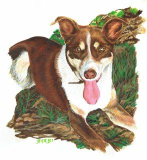 """Scanz"" Acrylic on watercolour paper Let me paint your best friend - www.furryfaces.co.nz"