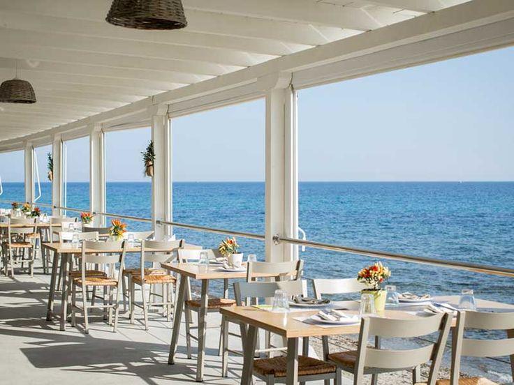 Στη Χαλκιδική υπάρχει ένα Bar Restaurant που όμοιο του δύσκολα θα βρεις!   biscotto