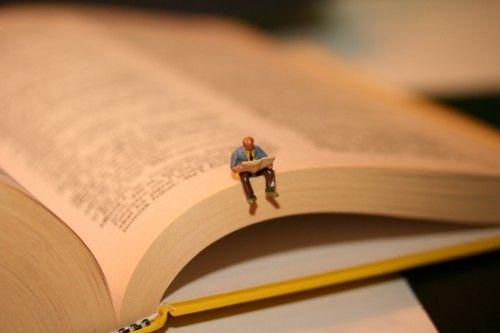 De 8 Succesfactoren van leesbevordering onderverdeeld in drie groepen; werkvormen, de leesomgeving en differientatie.