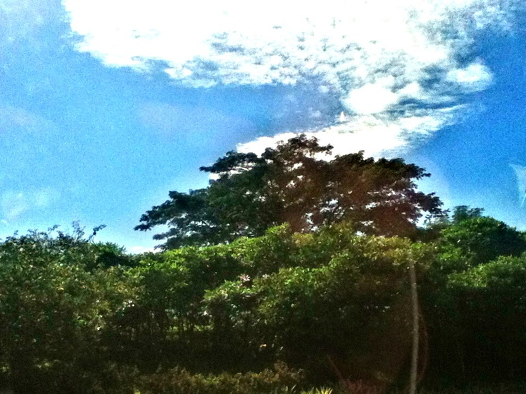 Subhanallah look how bright the sun shine
