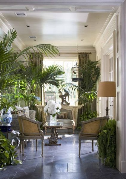 Lush palms, whimsical birdcage, formal white panel  contrast to black floor - welcoming tropical sunroom: Birds Cages, Idea, Traditional Porches, House, British Colonial, Southern Accent, Sun Rooms, Indoor Plants, Sunroom