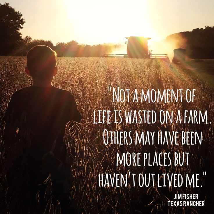 Farm Quotes New 37 Best Country Life Images On Pinterest  Res Life Agriculture