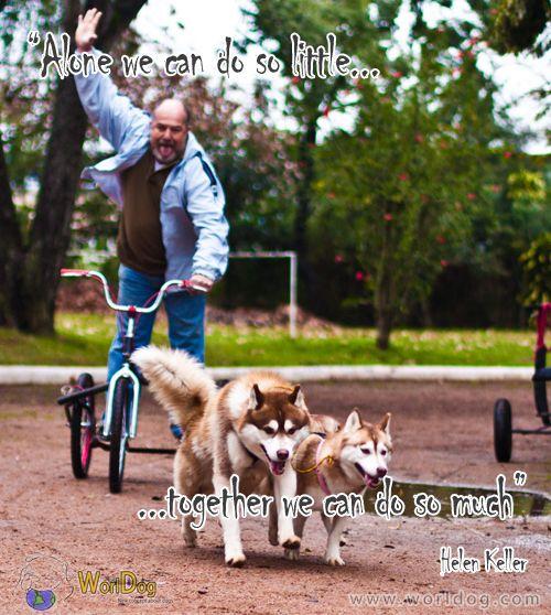 Daily Inspiration #19 - http://worldog.com/daily-inspiration-19