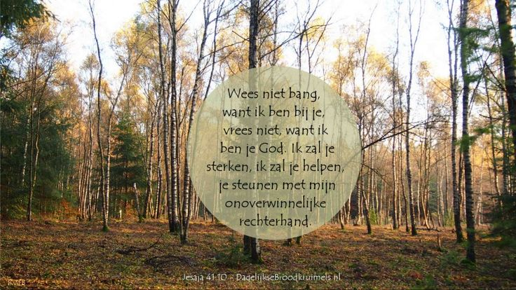 Jesaja 41.10 Troost bij Ziekte Overlijden Onzekerheid bijbeltekst Karin van der Breggen
