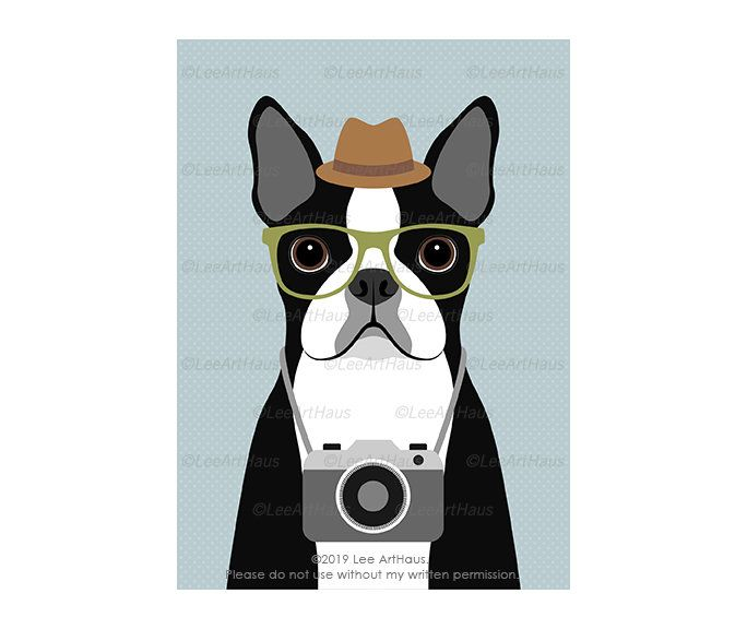 9g 5x7 Boston Terrier Dog With Camera Wall Art Whimsical