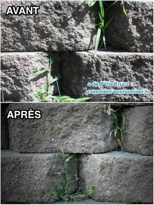 1000 id es propos de vinaigre des mauvaises herbes sur pinterest d sherb - Desherbant ecologique vinaigre blanc ...