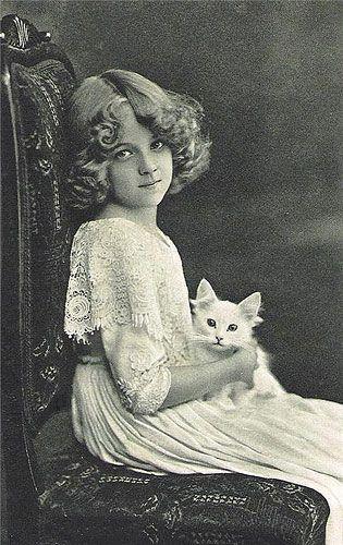 girl with kitten: Vintage Postcards, Little Girls, Vintage Photos, Grete Reinwald, Victorian Girls, White Cats, Vintage Girls, Vintage Cat, Young Girls
