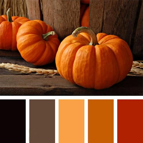 Interior Decoraitng Ideas and Halloween Decorations in Orange and Black Colors