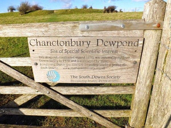 Chanctonbury Dewpond