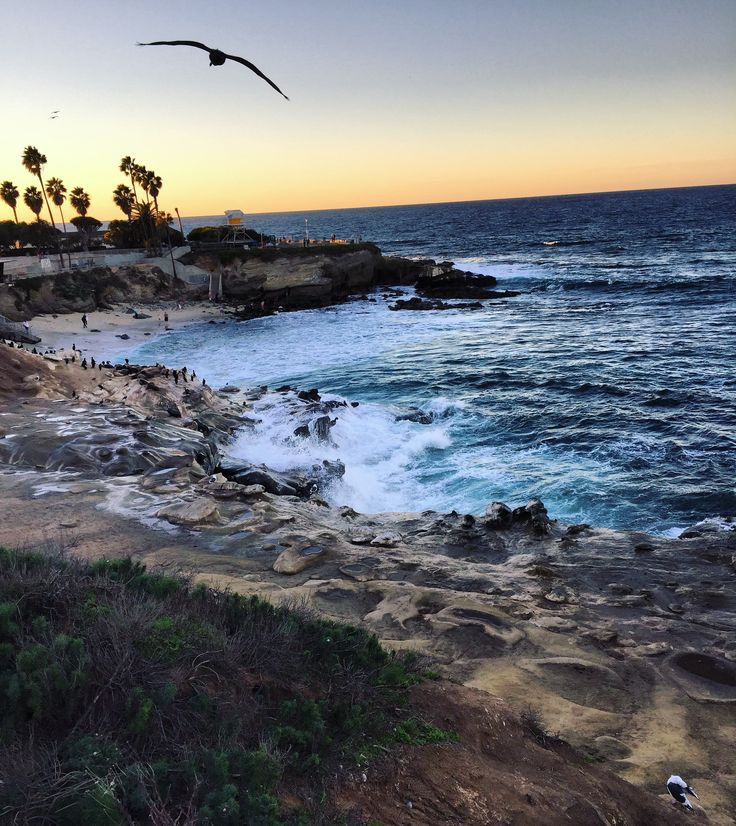 A Weekend Guide to La Jolla