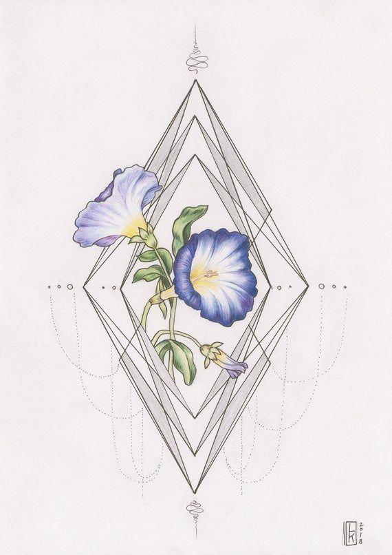 Morning Glory Geometric Illustration Scientific Flower Etsy In 2020 Geometric Flower Tattoo Morning Glory Tattoo Flower Tattoo Designs