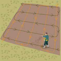 Semer du gazon : conseils et astuces pour semer du gazon