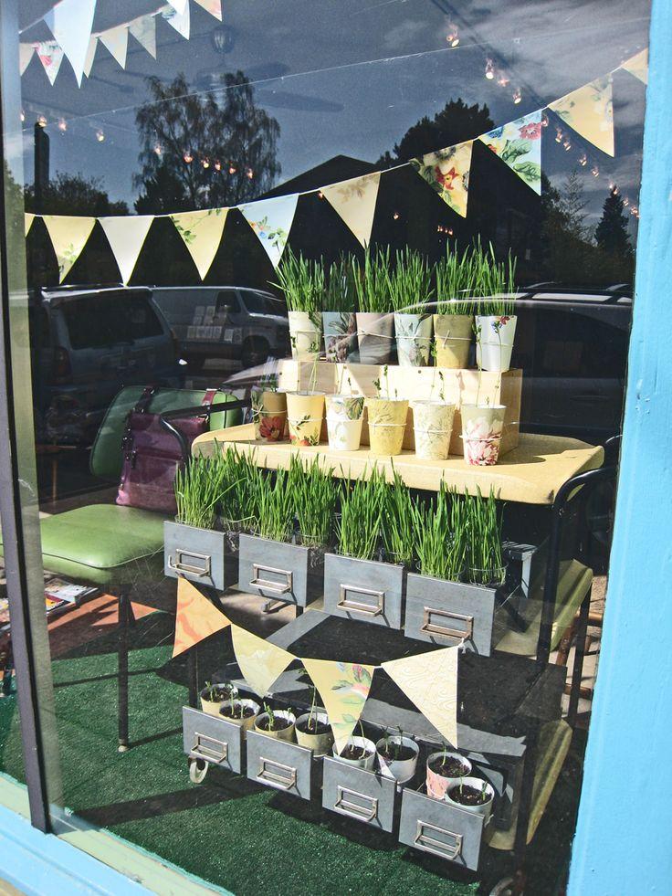 Green grass growing in window display at Tilde.