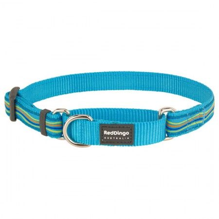 Red Dingo Dreamstream Turquoise Medium Martingale Collar - Red Dingo dog collar Red Dingo Dog Collar Medium - globaldogshop.com