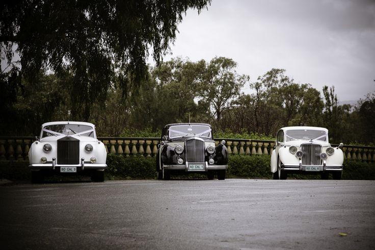 The Rolls Royce, Bentley & Jaguar