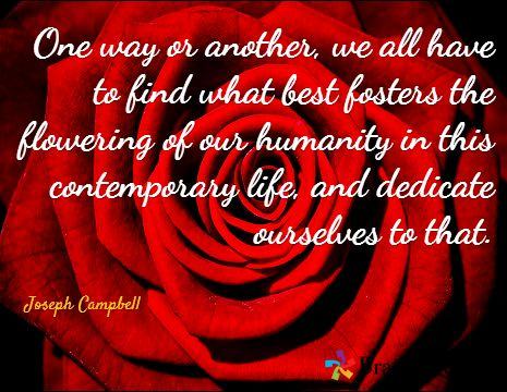 dedicate ourselves to that   Joseph Campbell  #lent