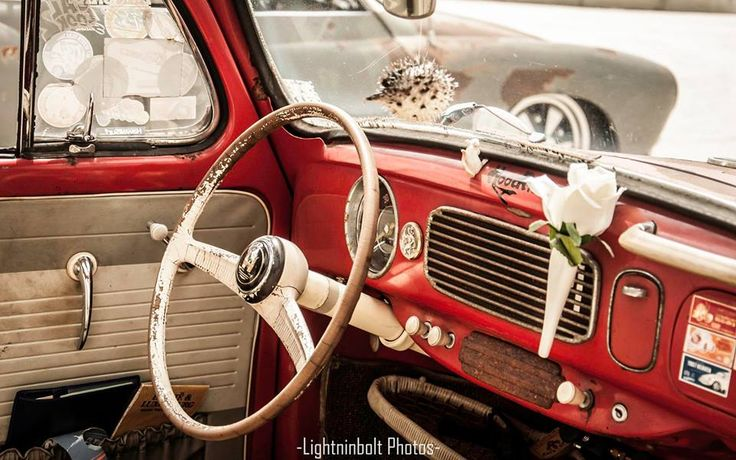 ideas  volkswagen beetles  pinterest volkswagen hatchbacks  vw bugs