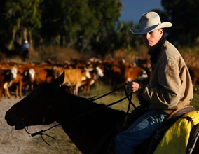68 Best Images About Florida Cowboys On Pinterest Cattle