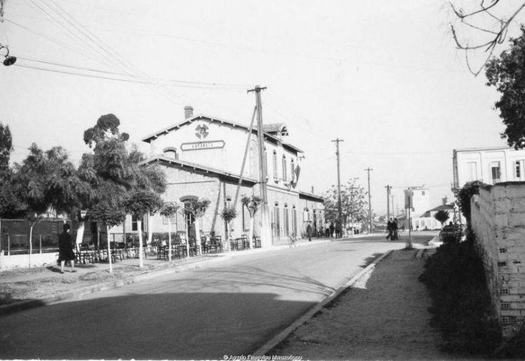 Η περιοχή του Σιδηροδρομικού Σταθμού της Καλαμάτας στα μέσα της δεκαετίας του 1960 Διαβάστε το άρθρο στην ΕΛΕΥΘΕΡΙΑ http://www.eleftheriaonline.gr/polymesa/nature/item/46975-kalamata-stathmos