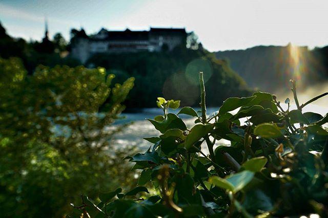der zweite Tag unserer Tour beginnt in #schaffhausen am #rheinfall, dem größten Wasserfall Europas :D  2. Etappe: #schaffhausen ➡ #waldshuttiengen [ca. 45 Kilometer]  #longboard #backpack #trip #tour #bodensee #konstanz #wasserfall #waterfall #castle # water #focus #sunrise #morning #deutschland #germany #schweiz #switzerland #nature #lake #landscape #village #summer #water #colorful #sony #sonyalpha7r2 #rheinfall