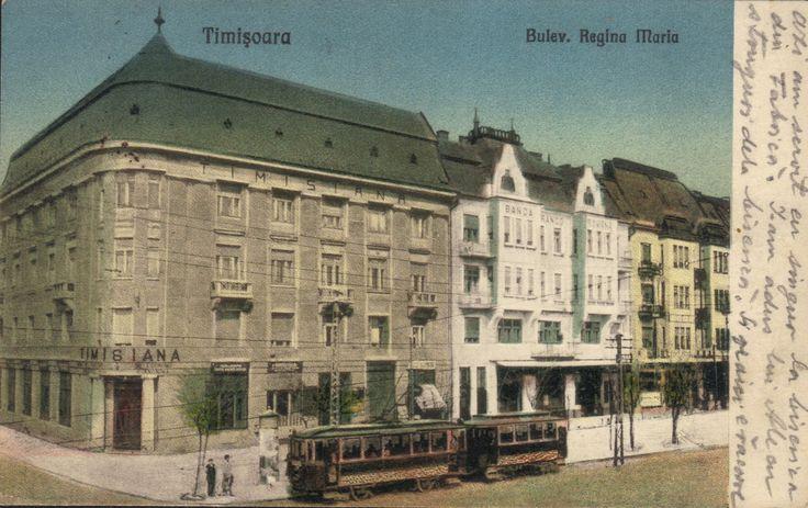 Timisoara - Bulevardul Regina Maria. 1926