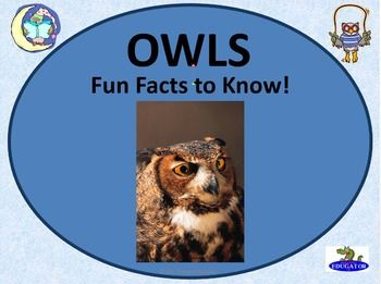 "Owls - Fun Facts About Owls PowerPoint. All about owls! Facts about the life of an owl; covers various species. Use in science to discuss owl pellets and owl behaviors. Informational text for reading practice. Build background knowledge for reading books with owls, like ""Owl Moon"" by Jane Yolen or ""Hoot"" by Carl Hiassen."