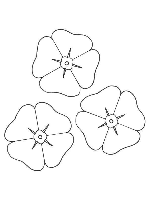 Good Poppy Coloring Pages 52 print coloring image