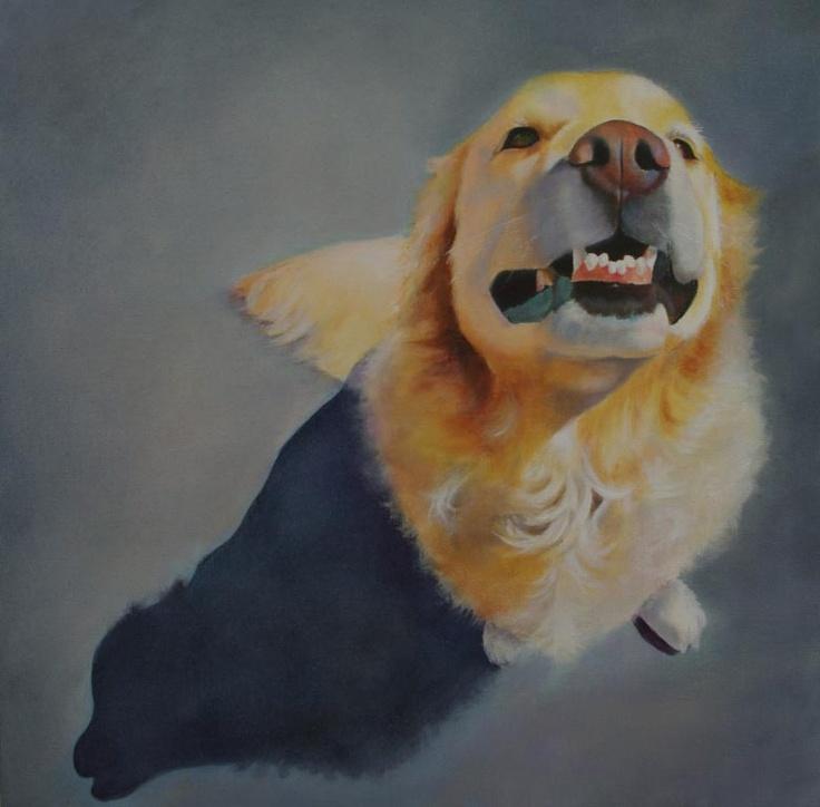 Golden Grin: Art Dogs, Porches Art, Golden Grin, Dogs Paintings, Animal Art, Canvas Prints, Canvas Art, Dogs Art, Artists Gwen